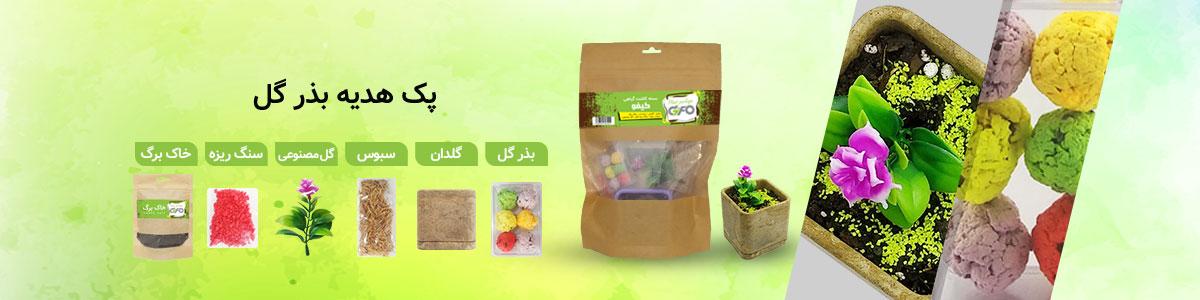 پک هدیه گیفو به همراه گلدان ، خاک ، بذر و گل مصنوعی
